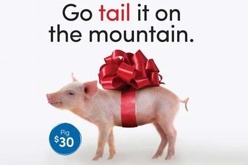 "Go ""tail"" it on the mountain - Shopping can change lives"
